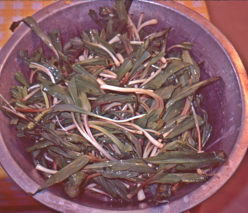 bowl of ramps